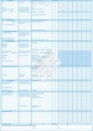 Pflegeplanung / Durchführung (Palliativ)